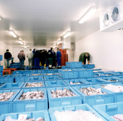 Eyemouth Fish Markets